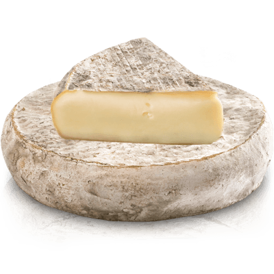 Сыр Saint-Nectaire Laitier