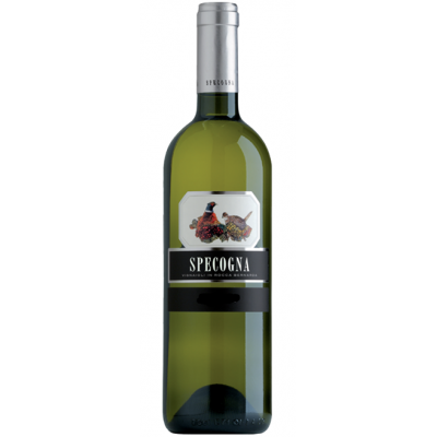 Вино Specogna Malvasia Friuli Colli Orientali DOC 2019